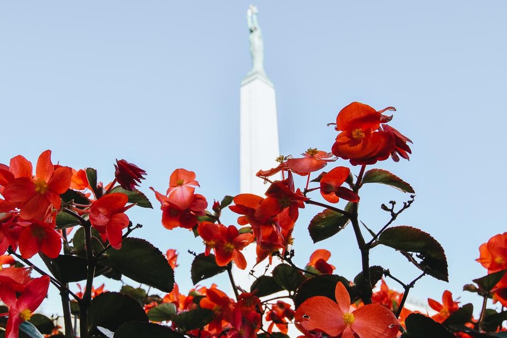 Riga Freiheit