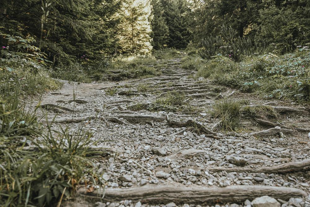 Fraßen-Weg