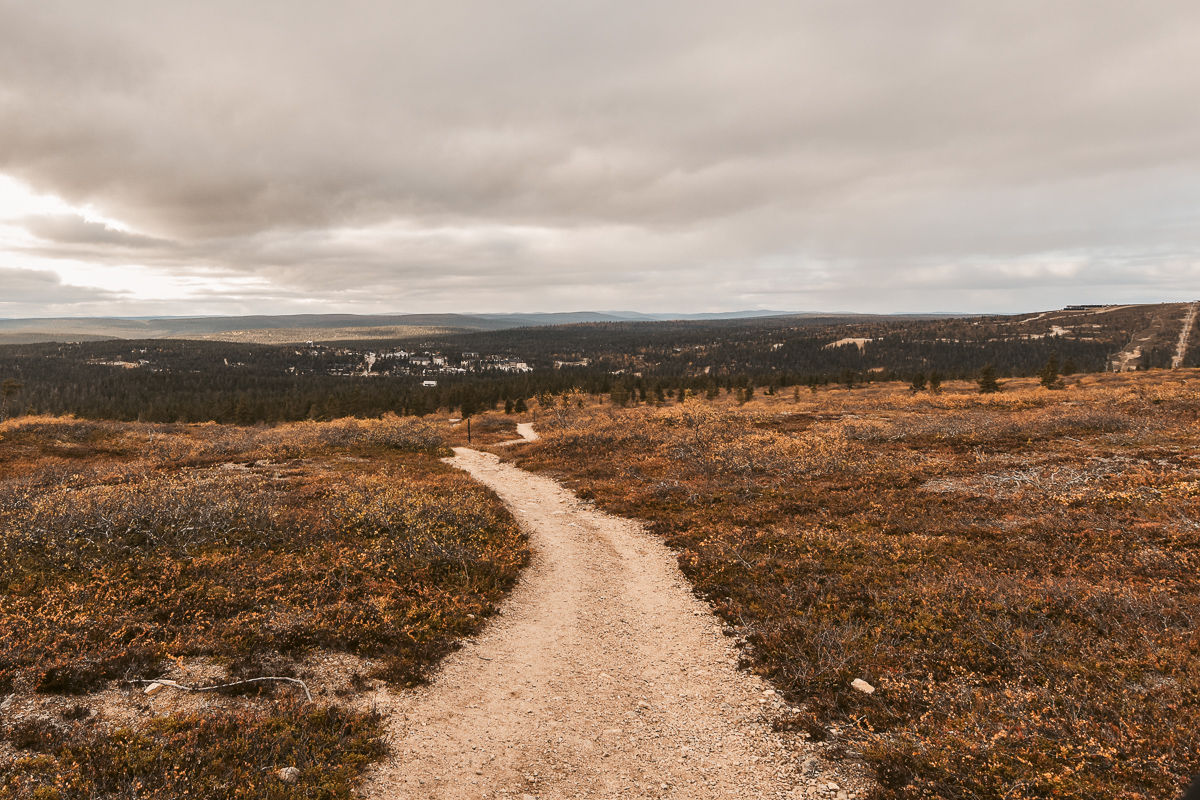 Finnland Tundra1
