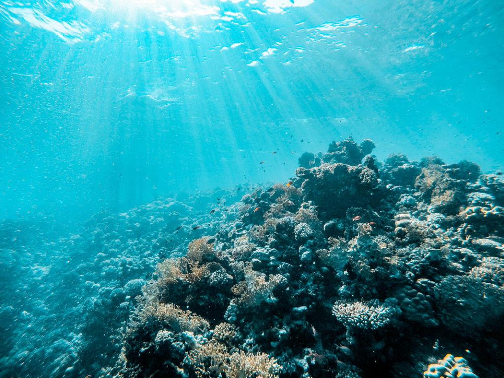 MA Unterwasser